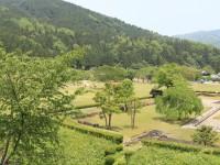 高台から見た義景館跡