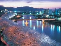 photo_fukui_city